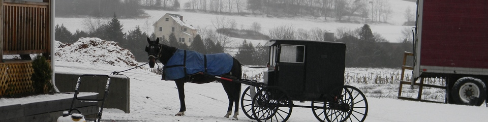 Amish buggy in Unity, Maine.